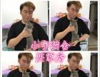 小宇—《本地猫舍》签协议保障健康出售—支持上门看猫