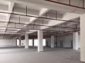 免中介民治独院18000平米厂房仓库出租(可分租)