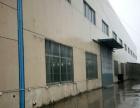 溧水开发区 创维乐活城 厂房 20000平米