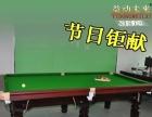 济南台球桌 益动未来S002台球桌标准台球桌