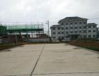 罗平县南片区新开发宅基地出售(手续齐全)