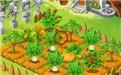 农场游戏开发郑州聚格科技