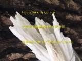 大冶锦鹏供应耐磨 耐腐蚀 抗紫外线涂料行业超细针状硅灰石粉