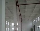 金湾1500平方1-5楼厂房招租