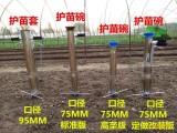 批发栽苗器 新型不锈钢栽苗器 蔬菜栽苗器 快速栽苗器