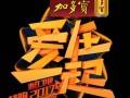 浙江卫视爱在一起领跑2017跨年演唱会