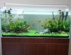 西安专业技术清洗鱼缸