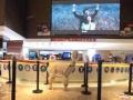 丽水哪有网络神兽租借影院展示 上海启欣展览展示有限