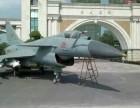 军事飞机模型坦克 变形金刚 恐龙展览