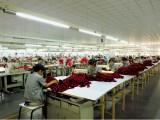 广东深圳大型服装厂T恤衫工作服制服批发加工,2013年新款热销中