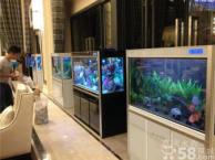 深圳专业鱼缸定做,鱼缸定制,鱼缸销售,鱼缸工程