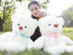 【特价直销】情侣泰迪熊  熊公仔玩偶 地摊毛绒玩具批发生日礼物