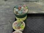 多肉植物(佛山顺德)