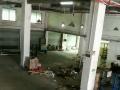 一楼厂房 1100平米