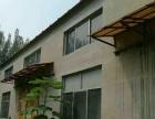 龙泉镇圈子村 厂房 2000平米