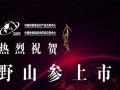 【中国供销集团野山参新零售】