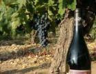 法國原瓶進口紅酒代理加盟批發團購名莊酒中級莊奔富拉