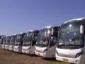 旅游租车、企业用车、会议用车、5-67座大巴车等