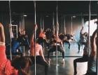 塑形美体,吊环空中瑜伽尽在东莞罗兰国际舞蹈学院