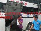 温州发往延安 豪华客车价格司机 18815-006695