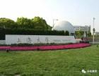 2020年上海大学MBA招生简章