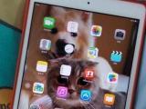 出售iPad mini 2