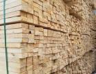 北京木方批发 建筑方木低价批发 竹胶板批发