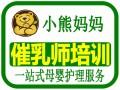 佛山高级催乳师/ 佛山月嫂/育婴师培训/小熊妈妈最专业