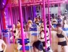 0基础学舞蹈香港星秀舞蹈学院大岭山舞蹈DS酒吧领舞