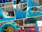 鲸鱼岛娱乐休闲夏季趣味游戏海洋球