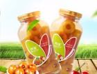 全新升级铁罐和派黄桃罐头 425g 6 休闲零食必备