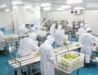 供应中央厨房设备商用不锈钢厨具