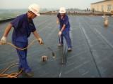 专业防水补漏,质量 ,质保十年