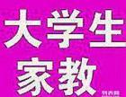 丽江辅导老师 大学生一对一上门辅导 中小学生文化课家教