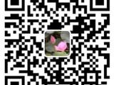 中港运输 广东中港物流价格范围