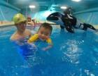 大连贝贝鲸亲子游泳 游泳早教 外教授课