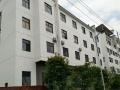 九龙公园厂房出租 仓库 2000平米