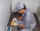 专业白蚁防治 除虫 灭蟑螂 灭虫灭蚊子 灭老鼠消毒
