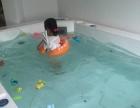 政务区国际花都营业中婴儿游泳馆对外出租