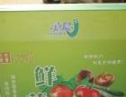 鹤壁较专业的水果纸箱包装 塑料提手款式做工精致