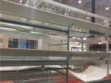 全自动肉鸡笼 中州牧业 专做全自动鸡笼 全网低价 品质保证