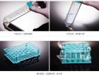 NEST细胞培养板 培养皿 带架离心管 无裙边PCR96孔板