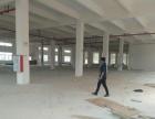 火炬开发区标准厂房4000方招租,层高6米