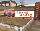 中州墙绘为你打造完美壁画