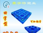 四川塑料托盘 成都塑料托盘 防潮板 卡板