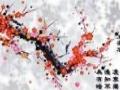 介绍诗词格律基本知识,以及初中语文、物理的辅导