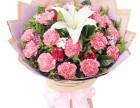 美丽心愿-教师节19枝粉色康乃馨精品花束预订