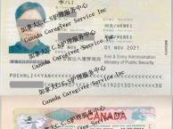 加拿大住家保姆移民,成都中介无需外地培训办理
