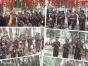 郑州户外拓展潜能激发、感恩教育、军训和青少年夏令营