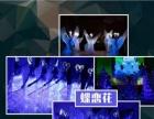 2017新颖互动秀大气开场007特工光耀未来